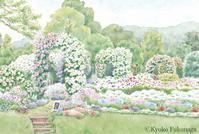 F's Garden - Kyoko Fukunaga Blog
