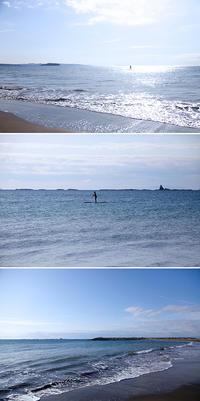 2019/02/10(SUN) 北風が冷たい朝.....波ありません。 - SURF RESEARCH