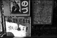中野-45 - Camellia-shige Gallery 2