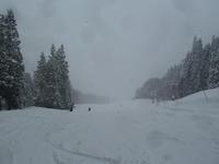 スキー! - 平野部屋