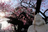 大黒様もご機嫌荏原神社 - 雲母(KIRA)の舟に乗って