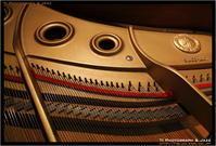 DP のハイライト - TI Photograph & Jazz