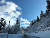 大鰐スキー場 - 畠山さとみの 今日のとぱーずむーん