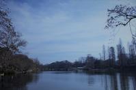 公園散歩とふわふわパンケーキ - さんじゃらっと☆blog2