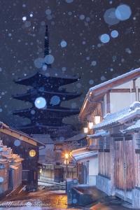 降雪の情景 - 写真ブログ「四季の詩」