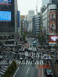 東京そぞろ歩き:渋谷 - 日本庭園的生活