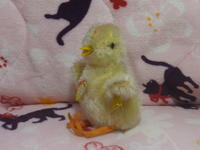 ヴィンテージ・シュタイフ黄色いお座りヒヨコちゃん Chick - ヴィンテージ・シュタイフと仲間たち