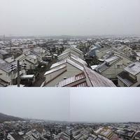 3連休3日目は雪!? - ぷこログ4