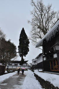 飛騨古川町 - 高原に行きたい