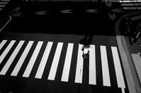 kaléidoscope dans mes yeux2019万代#14 - Yoshi-A の写真の楽しみ
