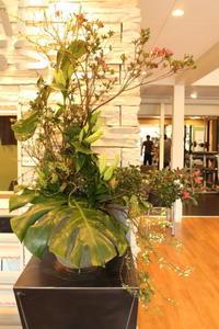 エニタイムフィットネスセンター赤羽北店様へツツジと雪柳 - 北赤羽花屋ソレイユの日々の花