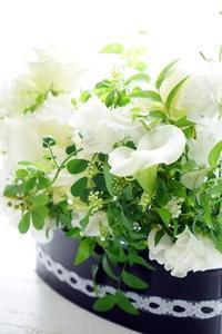 春はふわり♪ - お花に囲まれて