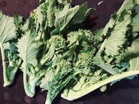 2月12日(火)の営業時間は12:00~17:00です。丹波篠山・福住のノウカナガイさんのお野菜を使ってサラダのような味噌汁を作ろうと思っています。 - miso汁香房(ロジの木)
