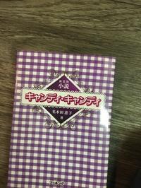 キャンディキャンディファン - ブリアンヌのお散歩日記