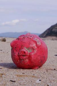 赤い貯金箱 - Beachcomber's Logbook