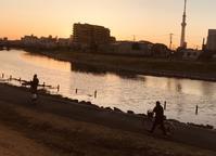 東京の川9 - はーとらんど写真感