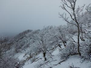 綿向山の霧氷間に合いました~ - K2 HAIR へようこそ               近江八幡市 美容室 美容院