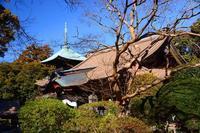 薬王院のお雛様‣‥・桜川市 - ひな日記