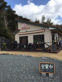 2019年2月和歌山旅行④イルリトロボでナポリピザをいただく - 龍眼日記  Longan Diary