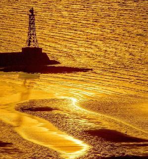 ? 干潟の砂模様=熊本県:御輿来海岸 - チャレンジ! 日々の散歩道