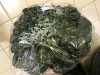 被りたくなる野菜、タア菜♪ - なつお風味のポンだし♪