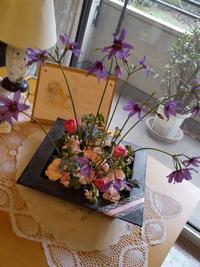 Lesson 「春のお花畑」☘️ - Flower ID. DESIGN