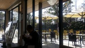 70代人生論友人と『駿府城ラン・アンド・リフレッシュステーション』でお茶 -