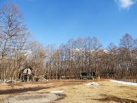 今週末の天気と気温(2019年2月14日) - 北軽井沢スウィートグラス