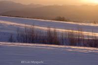 輝く雪の原 - ekkoの --- four seasons --- 北海道