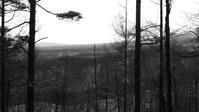 今期最後の単独猟 - 山谷彷徨
