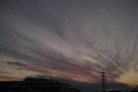 purple sunset - S w a m p y D o g - my laidback life