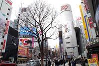 2月14日㈭の109前交差点 - でじたる渋谷NEWS
