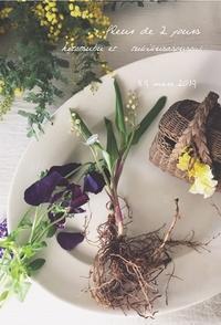 Fleurs de 2jours ひとつぶに菫とすずらんと・・ - tukikusa note