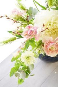梅よ咲け!桜は咲いたよ♪ - お花に囲まれて