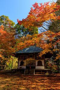 京の紅葉2018深まる山寺の秋・金蔵寺 - 花景色-K.W.C. PhotoBlog