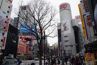 2月15日㈮の109前交差点 - でじたる渋谷NEWS