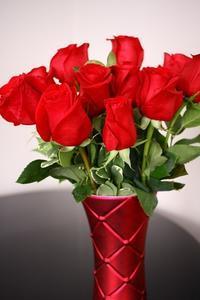Valentine's Day - 音楽・スィーツ・そしてBoston