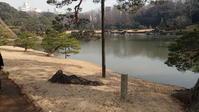六義園吹上の浜 - 名勝和歌の浦 玉津島保存会