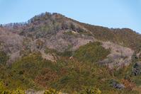 今日の散歩写真、日和田山へ - デジカメ写真集