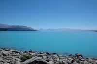 初めて南島を旅しました/Our First Visit to The South Island - アメリカからニュージーランドへ