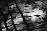 the ground - モノクロ備忘録