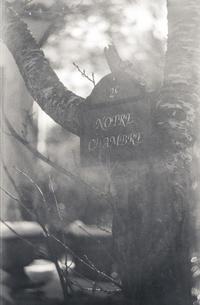 静かにルーツを語るカフェ前のサイン - Film&Gasoline