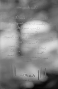 カフェの玄関窓に刻まれた呪文 - Film&Gasoline