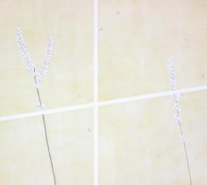 田中藍衣「垣根と隣人」のお知らせ -