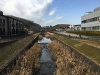 2019年2月 高尾山を歩く - 散歩ガイド