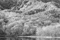 モノクロ風景戸隠鏡池 2 - 光 塗人 の デジタル フォト グラフィック アート (DIGITAL PHOTOGRAPHIC ARTWORKS)