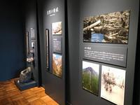 「くらやみの覇者」展ふじのくに地球環境史ミュージアム自然の脅威と恵み - ブリキの箱