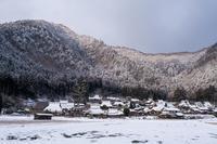 雪の美山昼 - toshi の ならはまほろば