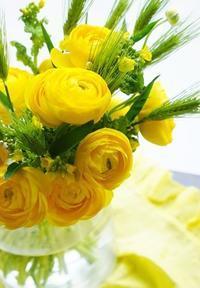 お花屋さん同行レッスン♪ - お花に囲まれて