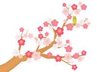 すみよっさん参り(岡) - 柚の森の仲間たち